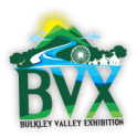 Volunteer @ the BVX
